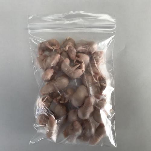 国産冷凍ピンクマウスM 25匹